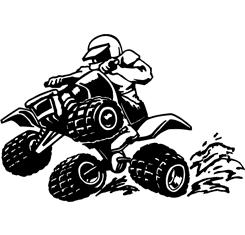 4 Wheeler Motorbike - Quad